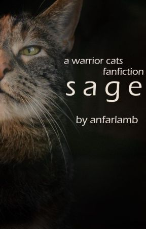 sage   a warrior cats fanfiction by anfarlamb