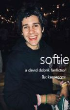 softie // a david dobrik fanfic by dummydobrik