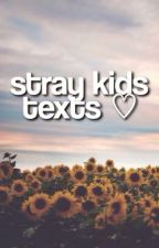 stray kids texts by straycultured