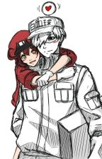 Cells At Work! (Red Blood Cell x White Blood Cell) Oneshots by EmilyLuvsFoxs