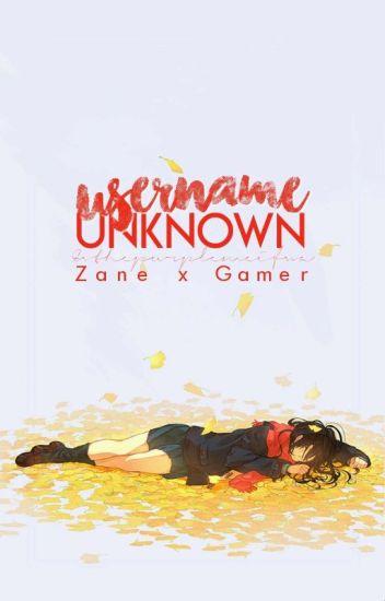 Username Unknown || Zane x Gamer!~ Reader - ⁺ ˚  * ✦ ᴇᴠ