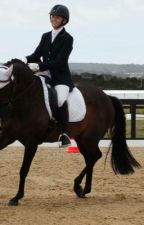 Dressage Rider by allivialdressage