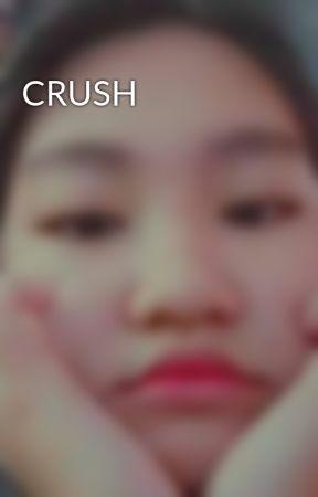 CRUSH by lianacrisna30