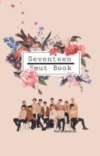 Seventeen Smut Book by SVTeenie