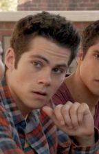 Teen Wolf Preferences by Snow_Wolves