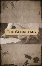 The Secretary by LilianeGrouse