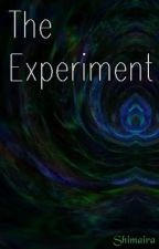 The Experiment by Shimaira