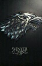 The bearer of house stark  by djmcvey7