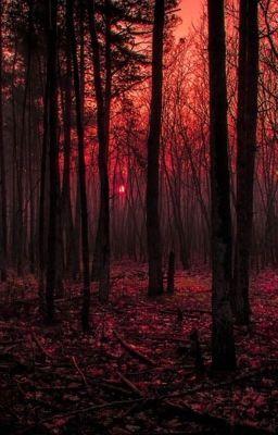 Đọc truyện Minrene #Mộng Tàn, Cơn Mơ Ấy, Anh Tìm Thấy Em
