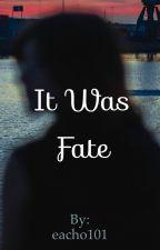 It Was Fate by eacho101