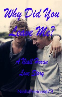 Why Did You Leave Me? (A Niall Horan Love Story)