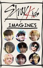 Stray Kids Imagines by SKZmachine