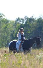 Relateable Equestrian Rants by rachel_mullerr