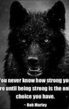 My favorite quotes by SkociRomaji