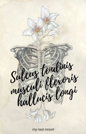 Sulcus tendinis musculi flexoris hallucis longi [help] by my-last-resort