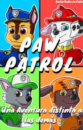 Paw Patrol La Historia Que Jamas Te Contaron Solo Aburrimiento Y