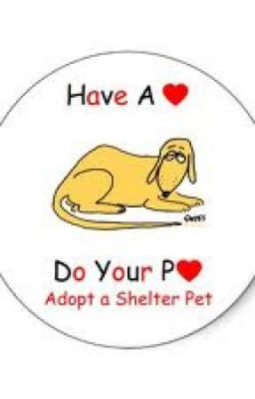 Ten reasons to adopt a pet by Totallyfrogs
