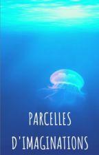 Parcelles d'imaginations by The_Rainbow_color