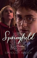 Springfield Harry Potter [1] by towning