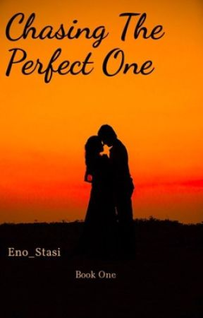 Chasing The Perfect One by Eno_stasi