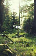 Tutto ha un'anima  by Fungo21