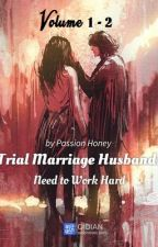 Trial Marriage Husband: Need to Work Hard (Volume 1 - 3) by Lady_Aphrodite18