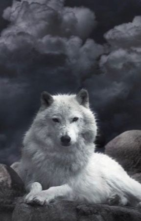 The Icy Wolf (a Percy Jackson FanFiction) by IceColdWolf_Cats