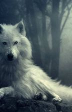 Whiter than Snow by HopeOfASilverSliver
