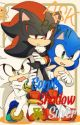 ASK Sonic, Shadow & Silver - Part II  by RunSonic