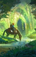 The First Champion | BOTW Link x Reader by MintieCakes