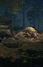 Resident evil, a new mistery (Continuation On Another ACC) by Darkside_dawn