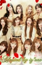adopted by IZONE (Under Editing) by Kpop_addict4