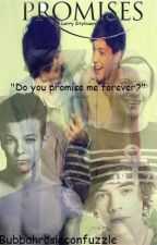 Promises (Larry Stylinson FanFic) by Roishene