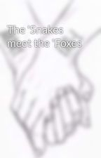 The 'Snakes meet the 'Foxes by FantasyWorld57