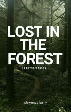 Lost in the forest - L.S [hiatus] by shwnnzzlarry