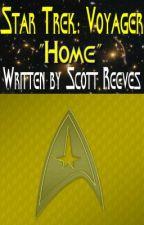 """Star Trek: Voyager - """"Home"""" by Scott_Reeves"""