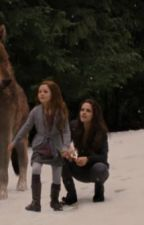 Renesmee's Change by MellissyDC