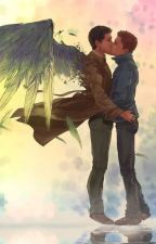 To hell and back( destiel college AU) by midnightstar335