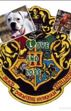 Love and loss (a harry potter love story) by once_upon_a__fandom