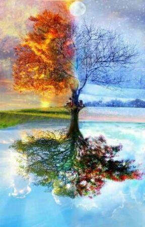 Xuân hạ thu đông - bốn mùa thương nhớ by sakuraandbara