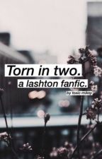 Torn in two - Lashton by toxic-mikey