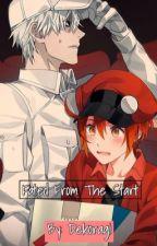 Fated From The Start (Hataraku Saibou fanfic) by Dekoragi