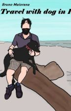 Travel with dog in Peru by mylastvacation