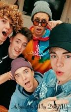 Adopted by Why Don't We ~Completed~ by oneseavey