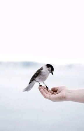 flightless birds   ✓ by goghsarah
