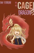 Caged Dragon by DestinyFerrum