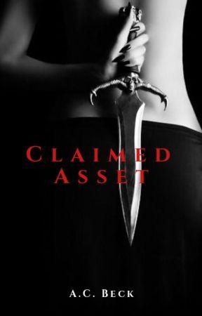 Claimed Asset (Asset Series #3) by KatNoir206