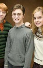 Leyendo Las Aventuras De Harry Potter by MartinaPrado
