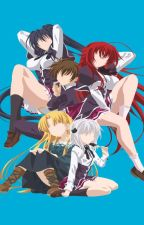 The sorcerer and devils. (Highschool DxD X male sorcerer reader) by C0rundum
