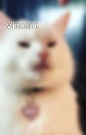 Vincent by TheQuaintAlienist